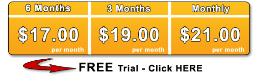 Website templates priced as low as $17 per month!